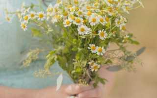 Свадебный букет невесты из ромашек: фотографии лучших букетов