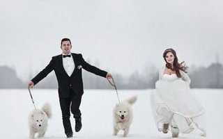 Лучшие идеи для фотосессии свадьбы зимой – самые оригинальные решения