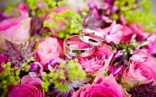 Изучаем правила подачи заявления на регистрацию бракав ЗАГС