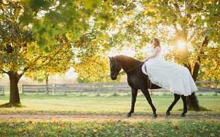 Свадебная фотосессия с лошадьми – несколько романтических идей