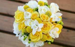 Выбираем жёлтый букет невесты: лучшие цветы и их сочетания
