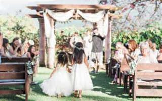 Лучшие идеи, как сделать арку на свадьбу своими руками из цветов