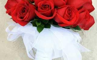 Красный букет невесты: с чем хорошо сочетается, как выбрать