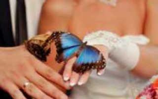 Бабочки на свадьбу — красиво и необычно
