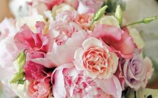 Свадебный букет из пионов – выбор элегантной невесты