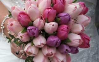 Выбираем свадебный букет из тюльпанов – лучшие варианты