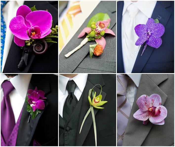 Цвета бутоньерок из орхидей