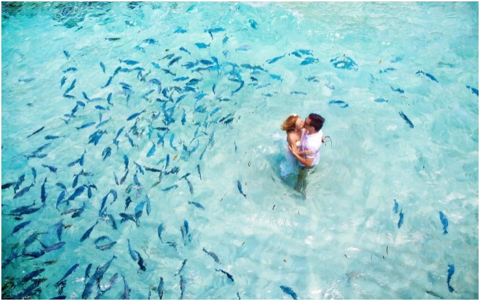 Свадебное путешествие к Мальдивам