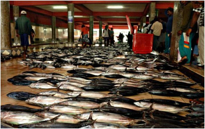 Рыбный рынок Мальдив