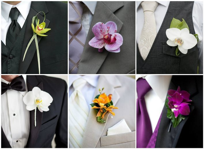 Орхидеи для петлички жениха