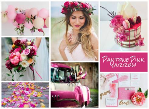 aisle_planner_pantone_pink_yarrow