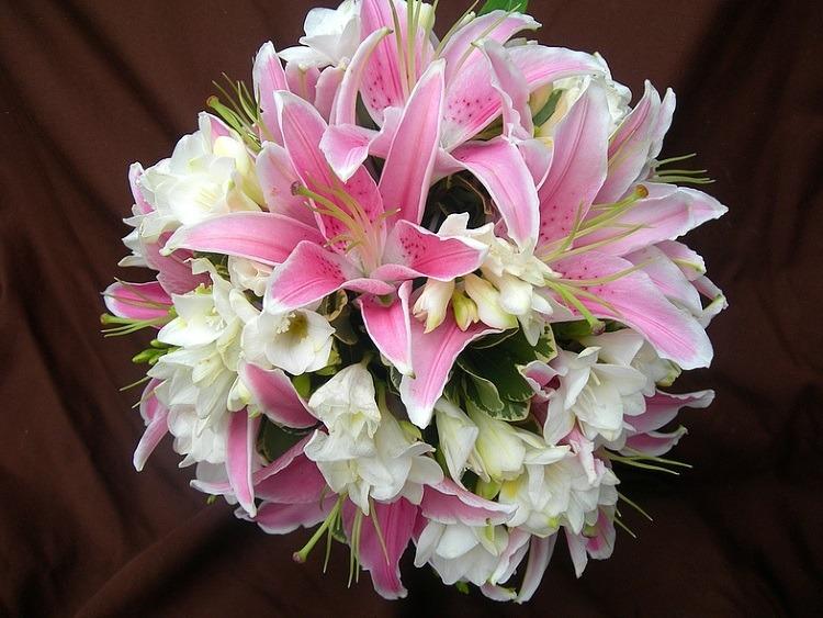 Сочетание с орхидеями