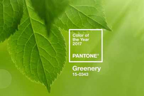 pantone-2017-color-of-the-year-101