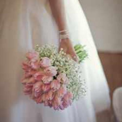 wedding-pink-blush